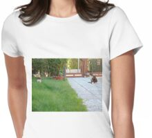 Two small cats Womens Fitted T-Shirt