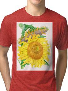 Mammoth Gray Stripe sunflower Tri-blend T-Shirt