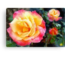 Rose color trio Canvas Print
