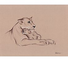 """Guardian"" - Lioness and Cub prisma pencil drawing Photographic Print"