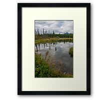 Forest Pond Near The Kicking Horse River in the Canadian Rockies Framed Print