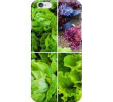 Photo collage of fresh lettuce plants iPhone Case/Skin