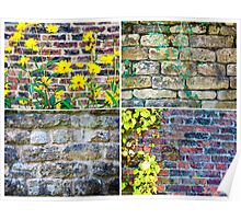 Photo collage of stone wall backgrounds with ivy leaves Poster