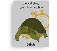 Angry Turtle Canvas Print