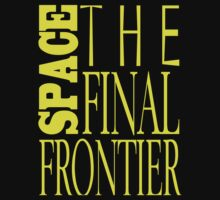 Space, the Final Frontier by swimchikk