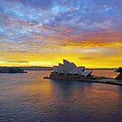 Sydney Sunrise by Harry Oldmeadow