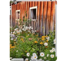 Grandma's Barn in the Summer iPad Case/Skin