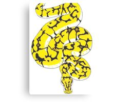 Spider Ball Python  Canvas Print