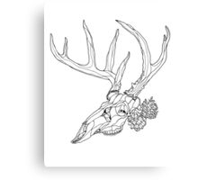 Whitetail Buck Skull with Pine Cones Canvas Print