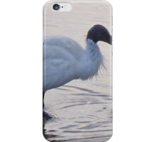 Australian Ibis iPhone Case/Skin