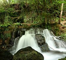 Waterfall Glade by ncp-photography