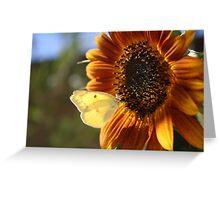 Luminescent Sun Landing Greeting Card