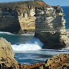 Incoming Wave at Victorias Coastline by hans p olsen
