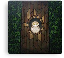 Masked Owl by Lantern Light Canvas Print