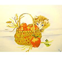 Apple Basket Photographic Print