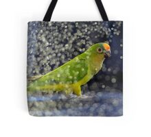 This Photo Shoot Is Fun - Peach-Fronted Conure - NZ Tote Bag