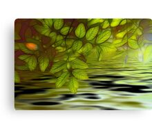 Green leaves background in summer with shallow depth of field Canvas Print