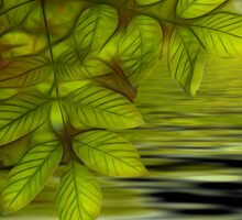 Green leaves background in summer with shallow depth of field Sticker