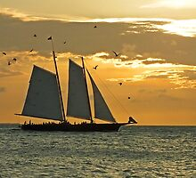 Sailing by Ludwig Wagner