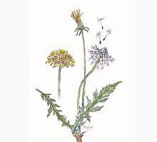 Taraxacum officinale (Dandelion) Botanical Unisex T-Shirt