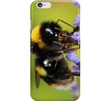 Bumble Bee & Lavender iPhone Case/Skin