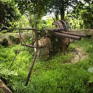 Japanese Anti-Aircraft Gun - Pohnpei, Micronesia by Alex Zuccarelli
