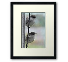 Looking through your window... Framed Print