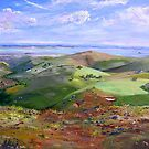 From Hancocks Lookout South Australia by Virginia McGowan