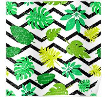 Bright tropical leaf Poster