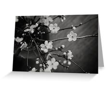 Black and White Blossom Greeting Card