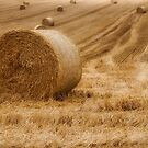Festival of Hay Balls in Scotland by Jeremy Lavender Photography