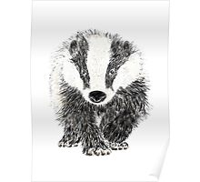 Mr Badger Poster