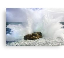 Untamed Forces II Canvas Print