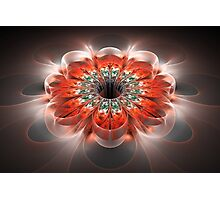 Crystal flower Photographic Print