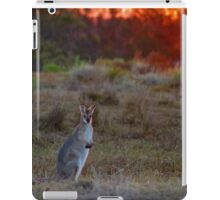 Evening Wallaby  iPad Case/Skin