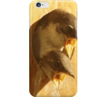 Baby swallow 2 iPhone Case/Skin