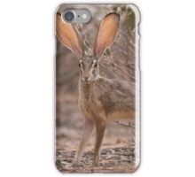 On Alert iPhone Case/Skin