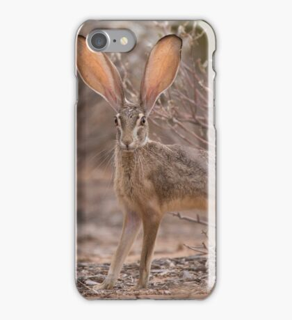 On Alert iPhone Case/Skin