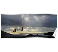 Flight into the Light. Poster