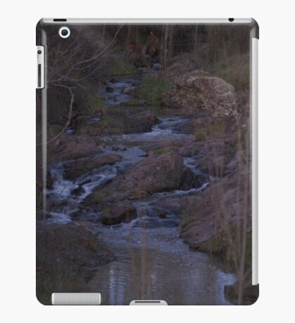 Hidden creek iPad Case/Skin