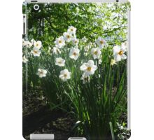 White Daffodils in Liverpool Sefton Park iPad Case/Skin