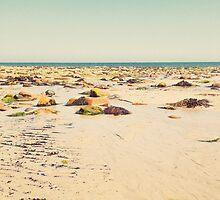 Rocky Beach by Cassia