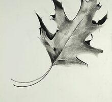 Autumn by kristinart