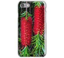 Weeping Bottlebrush 2 iPhone Case/Skin