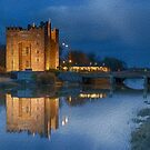 bunratty castle at night by Noel Moore Up The Banner Photography