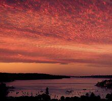 Sydney Sunset by kotchenography