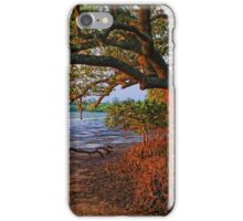 Under The Mangroves iPhone Case/Skin