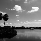 A Lake in Downtown  by LeonidasBratini