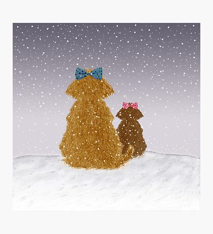 Baby it is cold outside Photographic Print