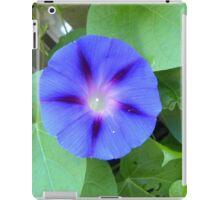 Blue Morning Glory iPad Case/Skin